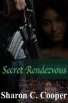 Secret Rendezvous-Book Cover