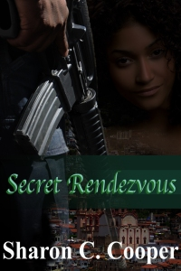 Secret Rendezvous-Book Cover
