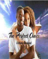 Libra R - book cover